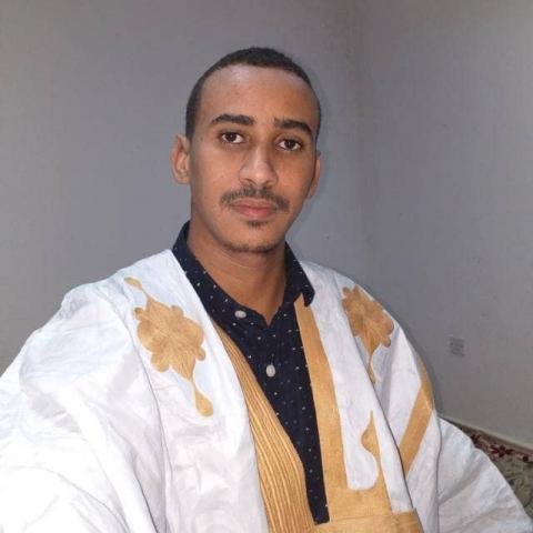 محمد محمد الأمين أحمدديده